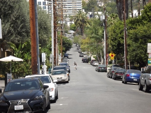 Palm avenue looking south from Sunset