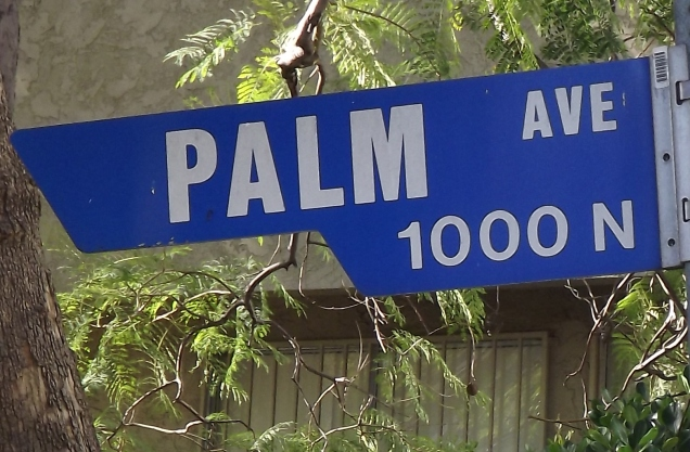 Palm Avenue in West Hollywood